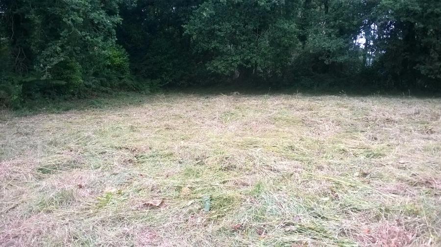 Terrain à Loperhet de 1000 m² à 75 500 €